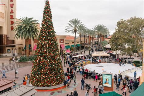 christmas trees irvine catchy collections of tree irvine fabulous homes interior design ideas