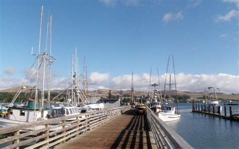 Bodega Bay Fishing Boats by Bodega Bay San Francisco Day Trip Things To Do