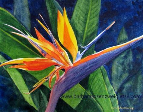 Tropical Flower Print Bird Of Paradise Exotic Flower