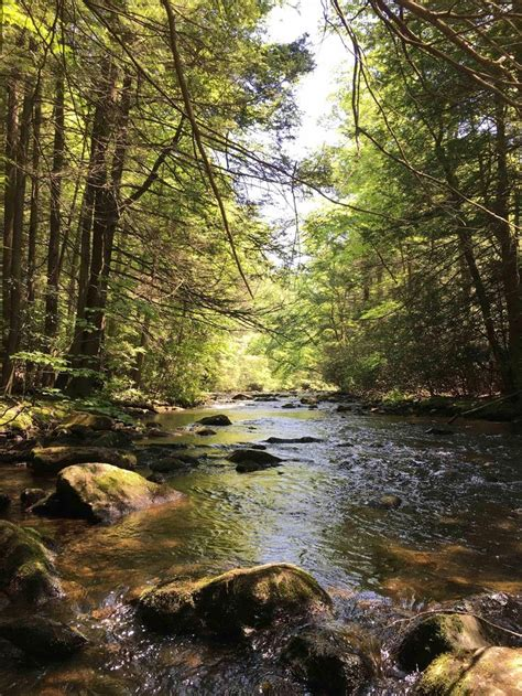 stoney creek pennsylvania  oc landscape nature