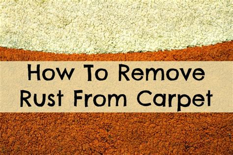 How To Remove Rust From Carpet  Home Ec 101