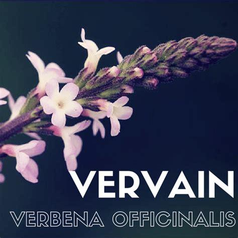 fiori di bach costi floriterapia con i fiori di bach il sito italiano di