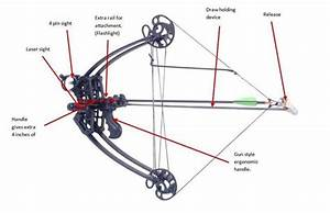 William Tell Archery Supplies Delta Bow Vertical Crossbow