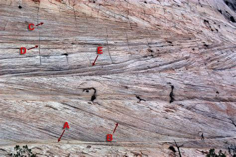 Trough Cross Bedding by Cross Bedding Bedforms And Paleocurrents Photos Figure