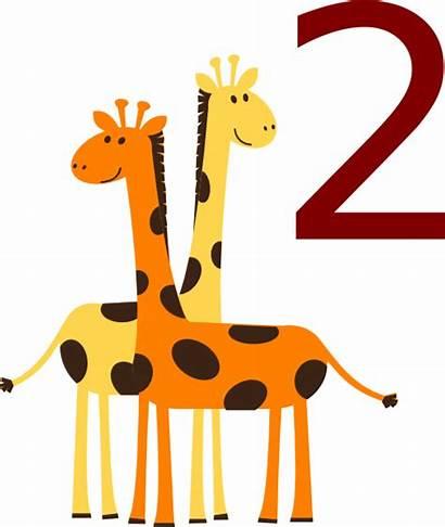 Animals Clipart Giraffes Number Cartoon Giraffe Cartoons