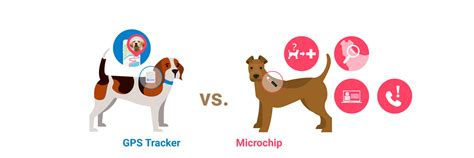 Dog Tracking Device Vs Microchip