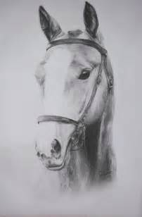 Pretty Horse Drawings