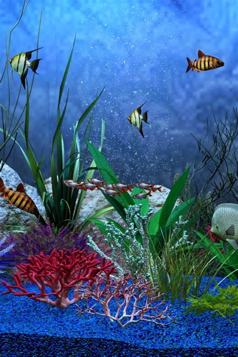 640x960 Aquarium View Iphone 4 wallpaper