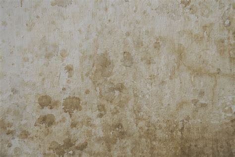 interior paint designs free texture best for photoshop textures for photoshop
