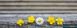 Titelbilder Facebook Ideen : cute flowers timeline cover 850x315 facebook covers ~ Lizthompson.info Haus und Dekorationen