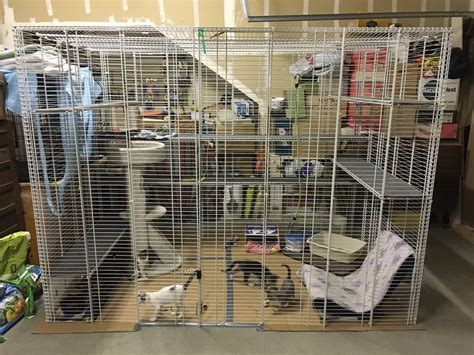 safe inexpensive cat enclosure community concern for cats