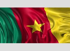 Stock Video Clip of Flag of Cameroon Beautiful 3d
