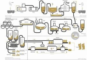 Fruit Ale Brewing Process Diagram