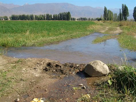 agriculture  kyrgyzstan wikipedia