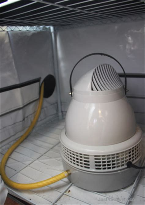How To Raise Relative Humidity Inside A Grow Tent  Just. Cake Decorating For Dummies. Three Season Room Furniture. Magnets For Cars Decoration. Rooms For Rent In Rochester Ny. Cheap Home Decor Online. Standing Room Air Conditioner. Silk Arrangements For Home Decor. Wrought Iron Room Divider