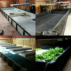 Diy Indoor Hydroponic Floating Raft System