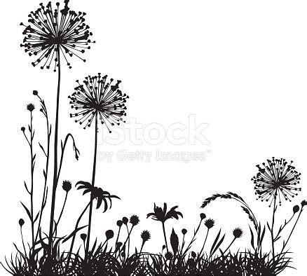 summer meadow  variable plants silhouette art