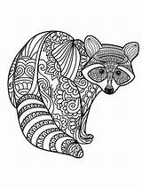 Coloring Raccoon Zentangle Adults Adult Printable Mycoloring sketch template