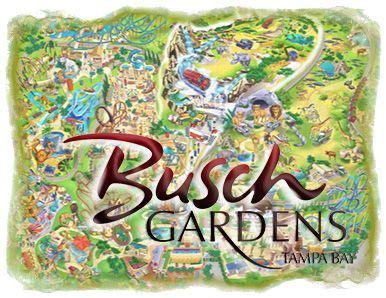 Busch Gardens Wait Times by 17 Best Images About Busch Gardens Ta Bay Fl On