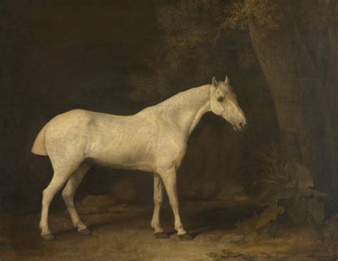 'horse In The Shade Of A Wood George Stubbs 1780 Tate