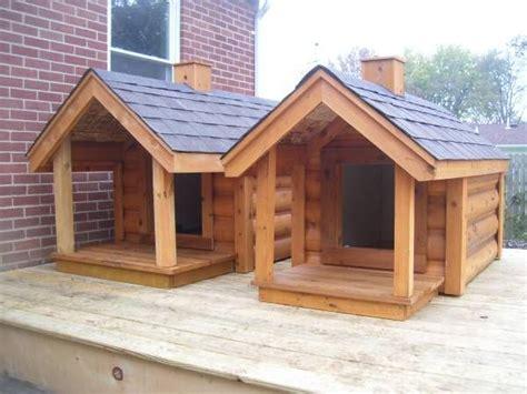 insulated dog houses  sale   large  extra large size siding options