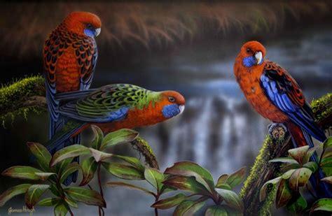 Artwork | Artists for Conservation