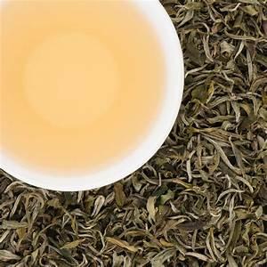White Tea Harvest in Iran's Gilan Province   Financial Tribune
