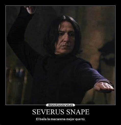 Severus Snape Memes - the gallery for gt dafuq is that