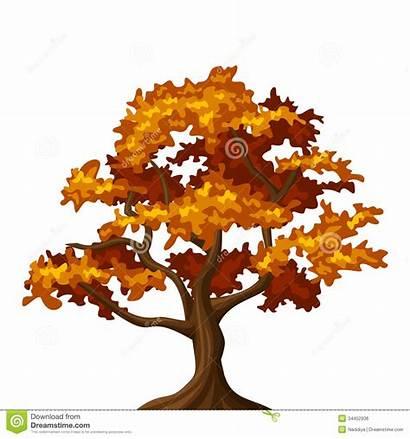 Tree Fall Autumn Clipart Oak Illustration Background