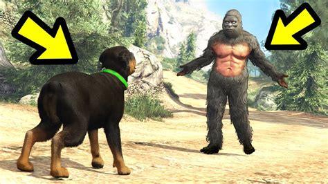 Chop Vs. Bigfoot! (who Wins?)