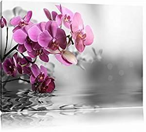 fleurs d39orchidees sur l39eau noir blanc taille 80x60 With affiche chambre bébé avec livraison orchidee pas cher