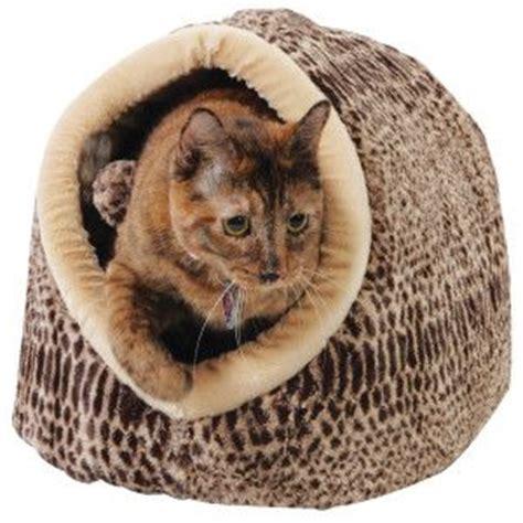 Warm & cozy in the cat cuddler – PetSmart $26.99 | The Cat ...