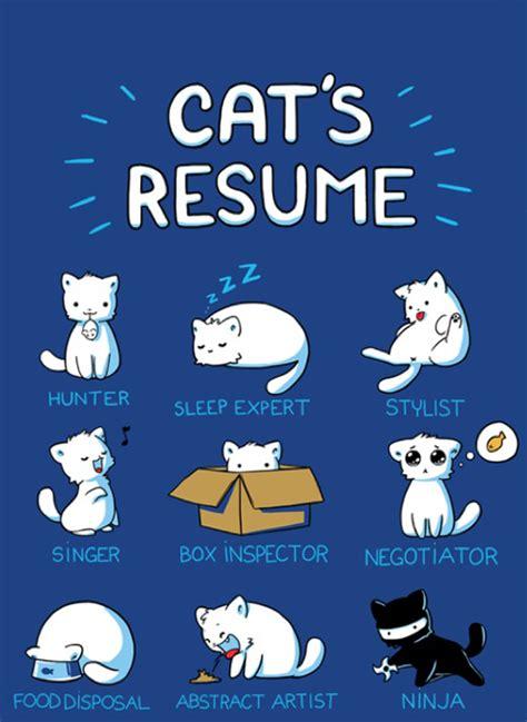 cat humor cat s resume fully feline