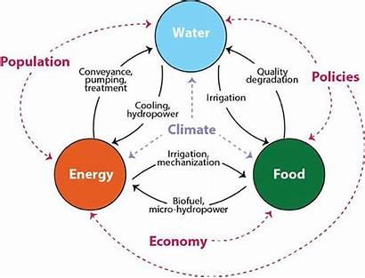 Energy Water Nexus Interdisciplinary Asu Team Approach