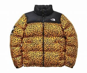Fancy - Supreme x The North Face Leopard Print Down Jacket