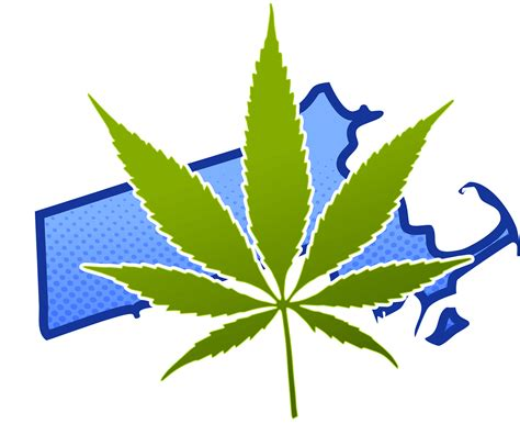 was fressen mäuse which patients qualify for marijuana use in ma