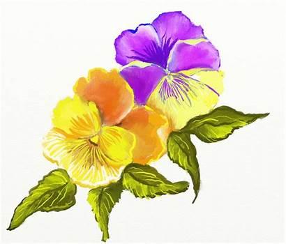 Flowers Flower Clipart Summer Clip Cliparts Border