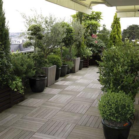 arbre en pot pour balcon arbre en pot pour balcon 28 images des arbres fruitiers nains pour balcon conseil balcon