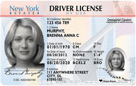 New York New Driver's License Application And Renewal 2019
