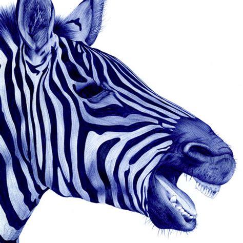 stunning animal portraits drawn   bic  colossal