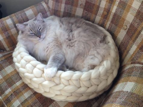 Chunky Knitted Cat Bed From Jennys Knitco On Etsy Product