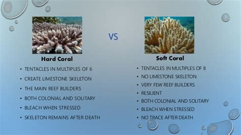 coral reefs  introduction