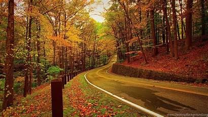 Autumn 1080p Wallpapers Desktop Backgrounds Forest Background