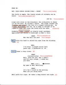 resume exle scripts script reader resume
