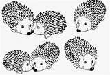 Porcupine Coloring Designlooter sketch template