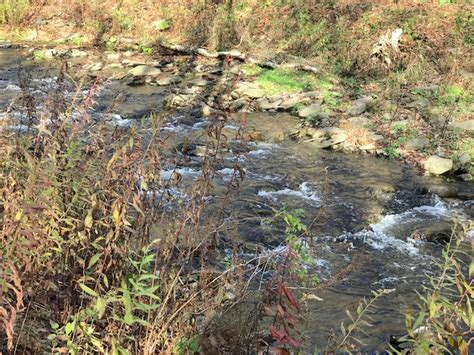 acres stream upper delaware real estate homes sale hancock ny downsville