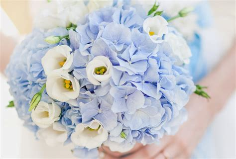Wedding Flowers by The 15 Most Popular Wedding Flowers In 2019 Shutterfly