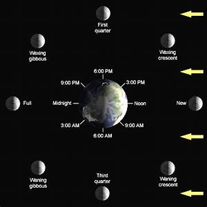 General Astronomy  Phases Of The Moon