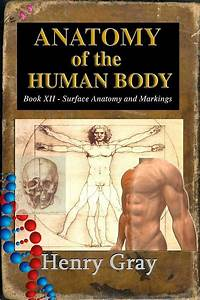 Anatomy of the Human Body - Book XII Surface Anatomy and ...