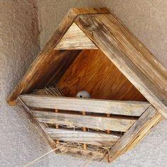 diy nest shelf  mourning doves robins bluejays phoebes print  woodworking plans